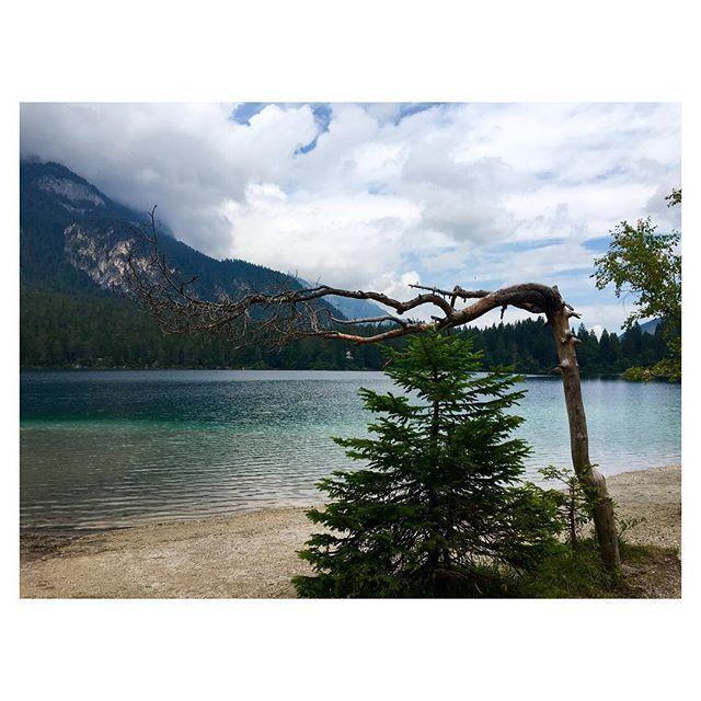 #beauty #natureporn #naturephotography #landscape #landscapephotography #igerstrentino #ig_trentinoaltoadige #love #instalake #instamoment #l4l #instatravel #visitvaldinon #adamellobrenta #tovel #sudtirol #naturelover #intothewild #paintings #iphonephoto #iphoneonly #instagood #instamood #igerstravellers