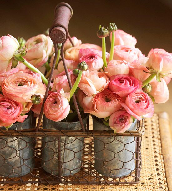 A mass of pink ranunculus offers a sweet counterpoint to its rustic container.