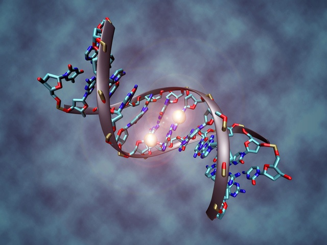 Harvard Medical School researchers encode full-length novel in DNA