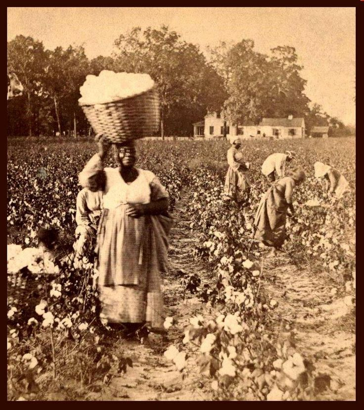 history of the american working woman She is currently at work on a history of women and irrigation settlement in the american west domesticity and native american assimilation in the american west, 1860-1919 room to invent new identities — maria raquel casas.