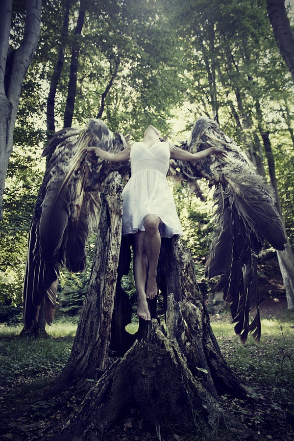 Broken Wings by Jenny Jacobsson....fabulous digital manipulation. #angels