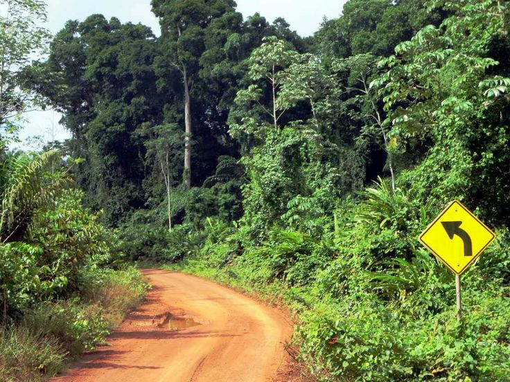 The Linden-Lethem Road connects Georgetown, Guyana, to the Brazilian border. Plans to pave the highway currently in the pipeline are viewed with trepidation by many Rupununi residents.