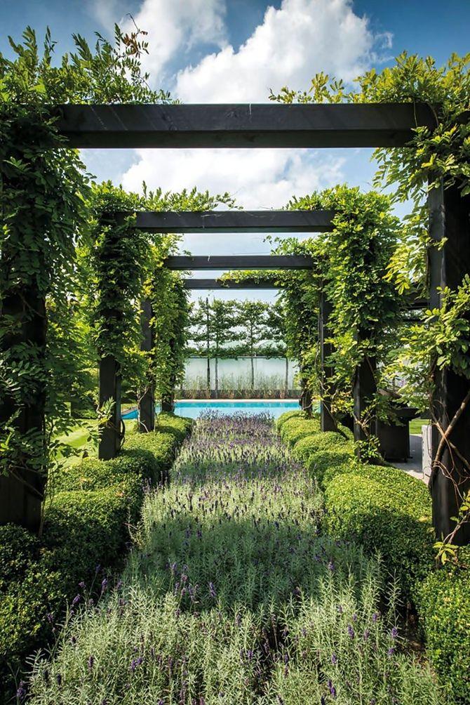 Garden Structure & Lavender Row