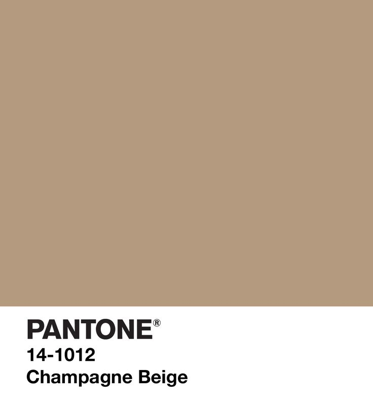 Champagne Beige - Pantone