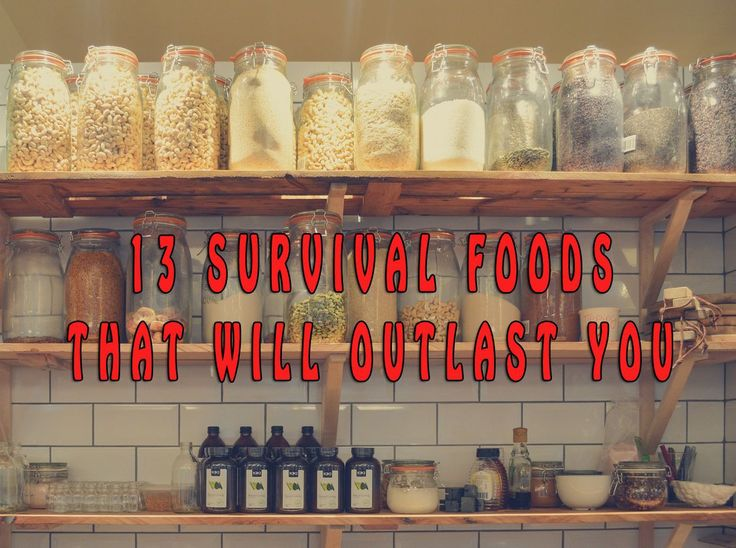 13 Survival Foods that will outlast you