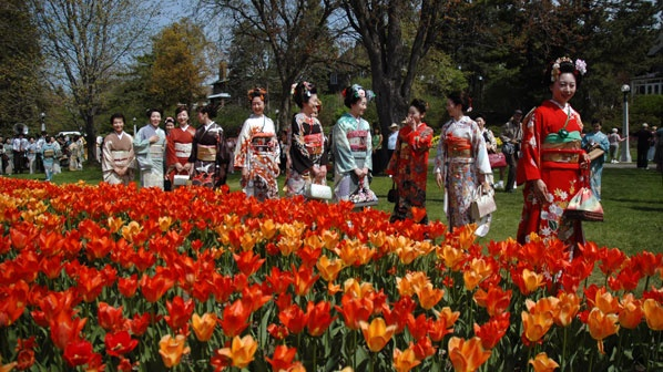 Festival des tulipes à Ottawa.