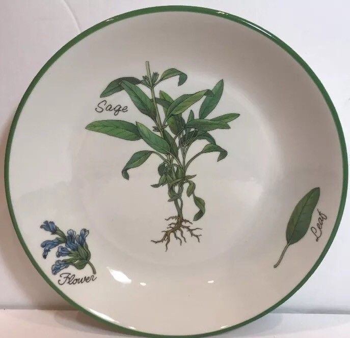 Over and Back Inc.Made in Italy Green Sage Herb Design Individual Pasta Bowl 9.5 #OverandBackInc