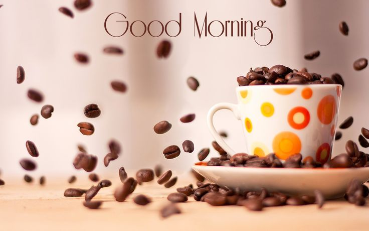 Funny Good Morning Coffee   Wallpaper : Coffee Cup Wishes for Morning