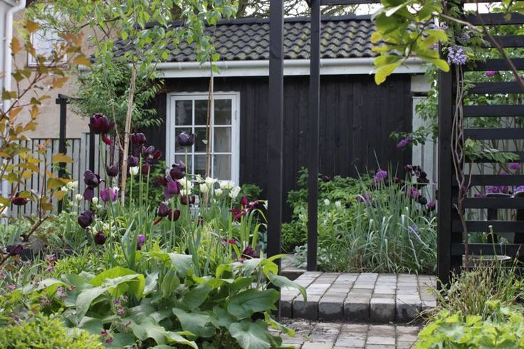 116 Best My Private Garden Images On Pinterest Private