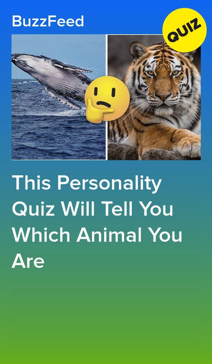 Which Animal Are You Spirit Animal Quiz Animal Quiz Spirt Animal Quiz