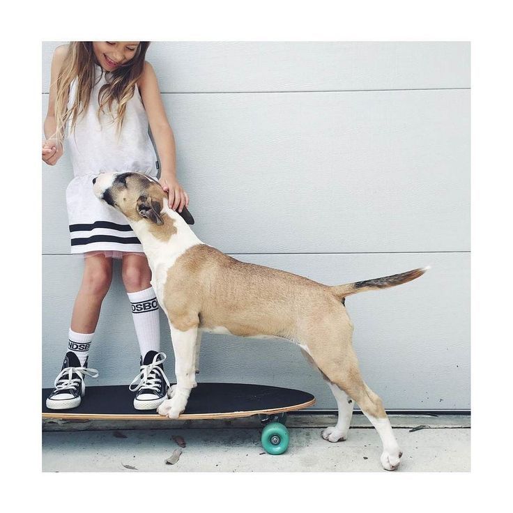 Sunday Skater Girl @bondsaus pic @melissabomba #bondssummerloves
