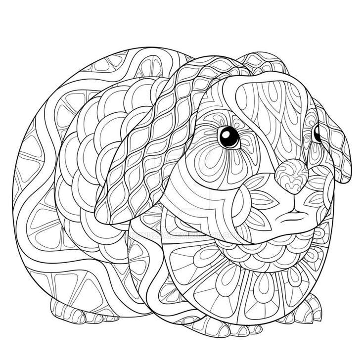 Mejores 264 imágenes de coloring rodent en Pinterest
