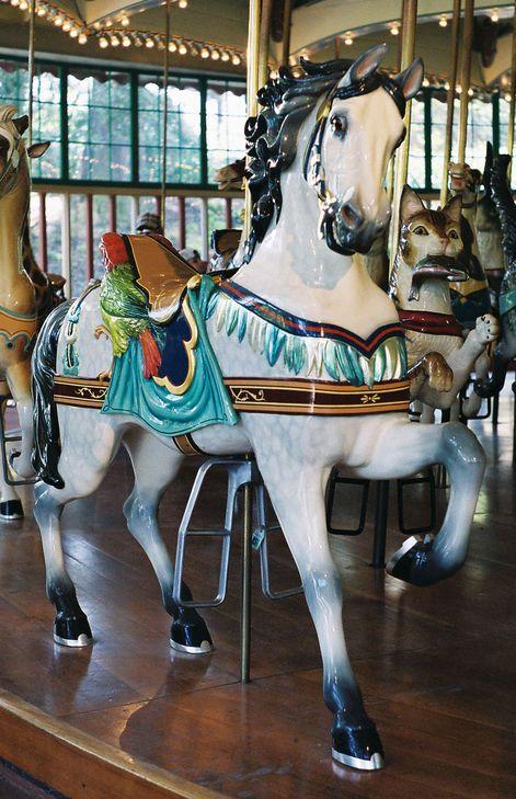 San Francisco Zoo Carousel  Dentzel Outside Row Stander