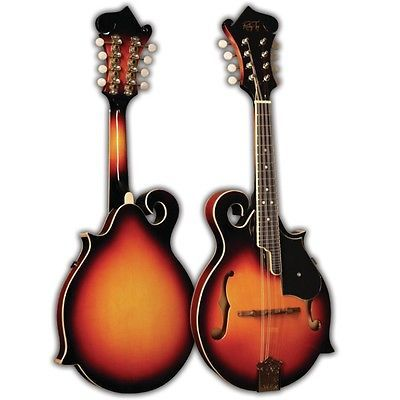 1000+ images about My Mandolin on Pinterest