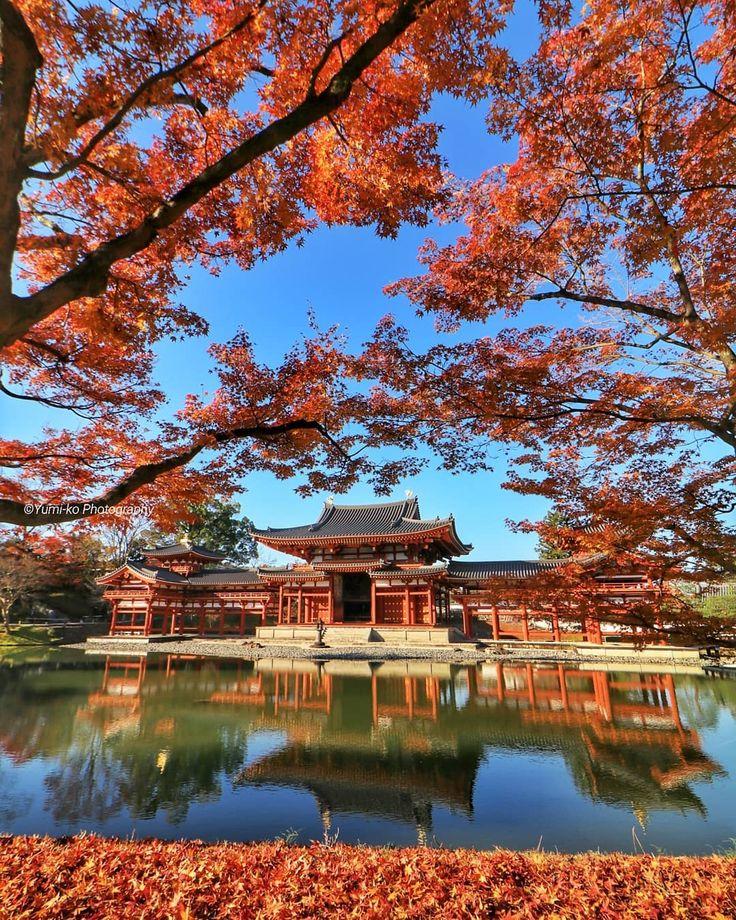 平等院鳳凰堂🍁✨ . . . . Location: Kyoto, Japan . . Thanks for the feature😊🙏🎶 @inspiring_shot . #平等院 #平等院鳳凰堂 #鳳凰堂 #寺社仏閣 #紅葉 #錦秋 #そうだ京都行こう #日本に京都があってよかった #京都 #宇治 #Kyoto #autumn . #yumikoの京さんぽ