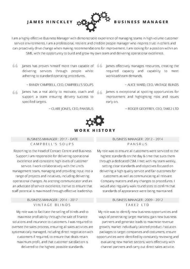 Business manager cv free word cv template with example