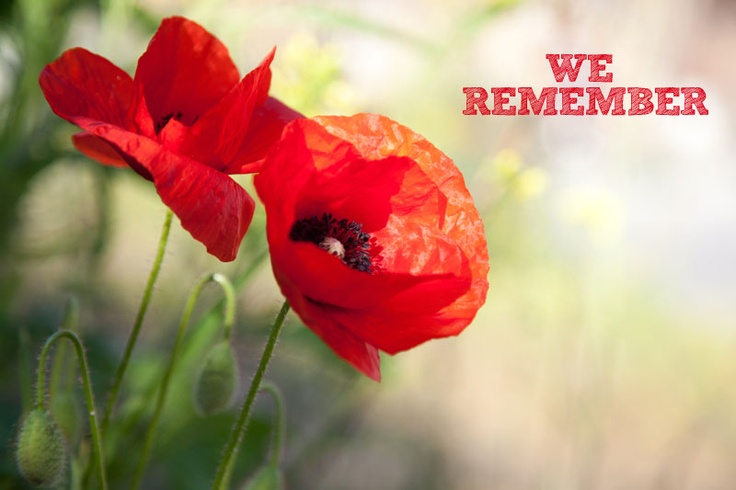 Canadian Veterans - Remembrance Day November 11th  ... and the 11th Hrs. for a moment of silence.....