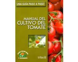 Resultado de imagen para cultivos de tomates