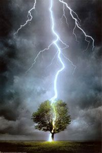 This breathtaking image captures the drama and natural power of lightning striking a tree. Framed and texture-glazed poster comes hand-finished with a non-reflective 100-percent acrylic polymer coatin
