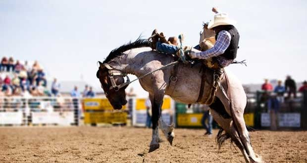 15 Best 2012 Nfr Tie Down Roping Contestants Images On