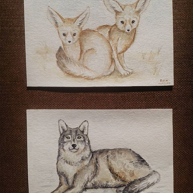 Two paintings for two very special girls. Thanks for always putting up with me, I truly appreciate both of you!   #watercolorpainting #illustration #fennecfox #wolf