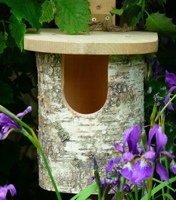 Natural Birch Robin Nest Box £14.95