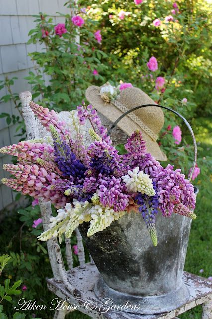 ♥Floral Centerpieces, Gardens Ideas, Beautiful Flower, Spring Flower, Summer Day, Cottages, Gardens Parties, Old Chairs, Purple Flower