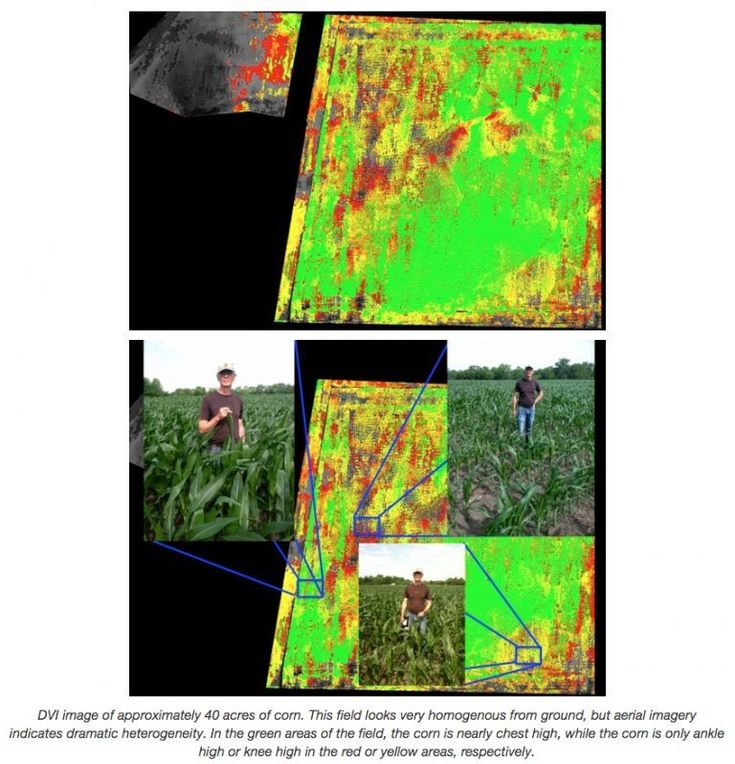 Agriculture Drone Buyers Guide DVI images of 40 acres of