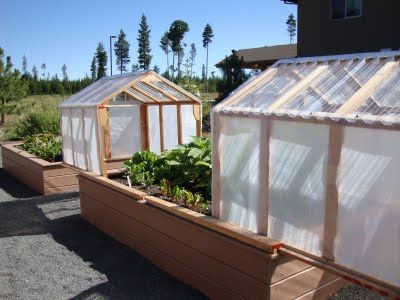 Mini-greenhouses or raised beds? Both! - This is so cool! Raised bed, mini-greenhouse that slides open.