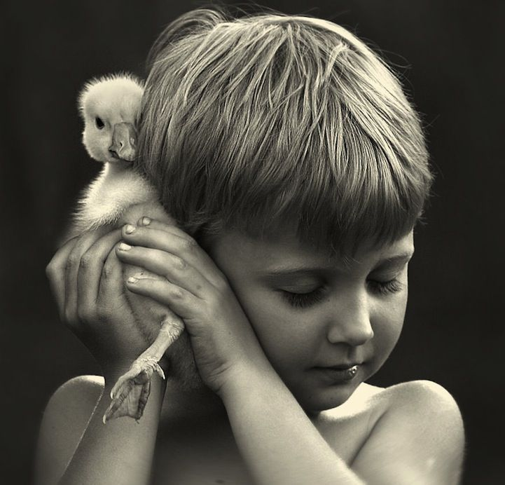 Best Foto Images On Pinterest - Mother takes amazing pictures ever children animals farm