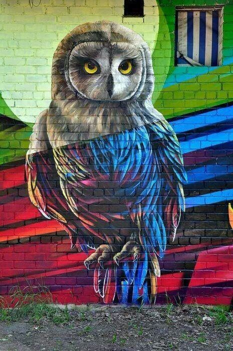 Colorful owl mural. How's that for graffiti?