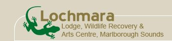 Lochmara Lodge : Accommodation & Eco-Activities in Queen Charlotte Sound, NZ : Home > Welcome
