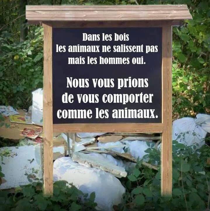 Respectons la nature !