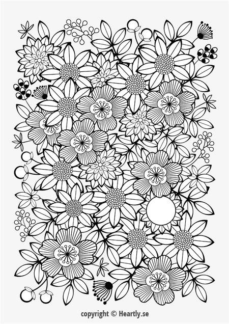 Kleurpboek Coloring page book - Målarbok för vuxna-004