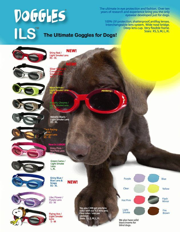 FurBall: Products · Eyewear · Doggles