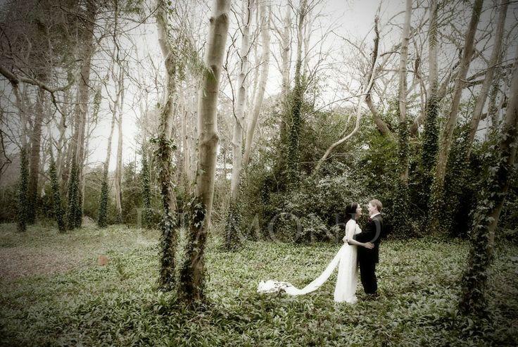 Diamond Photography > Weddings > Sample Wedding 1