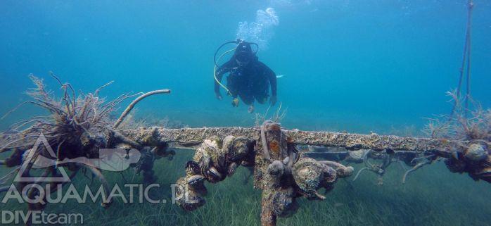 http://www.divingpag.com/ Nurkowanie w Choriwacji to niesamowite przeżycie - skuś się i przeżyj z nami swoją najwspanialszą podwodną przygodę!