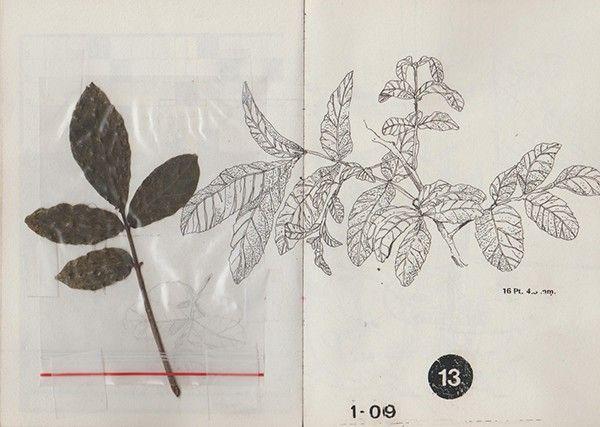 Libreta / Sketchbook. on Behance