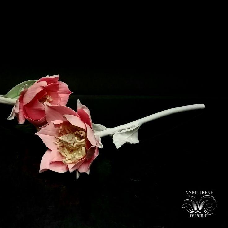 Ceramic flowers magnolia (porcelain magnolia)