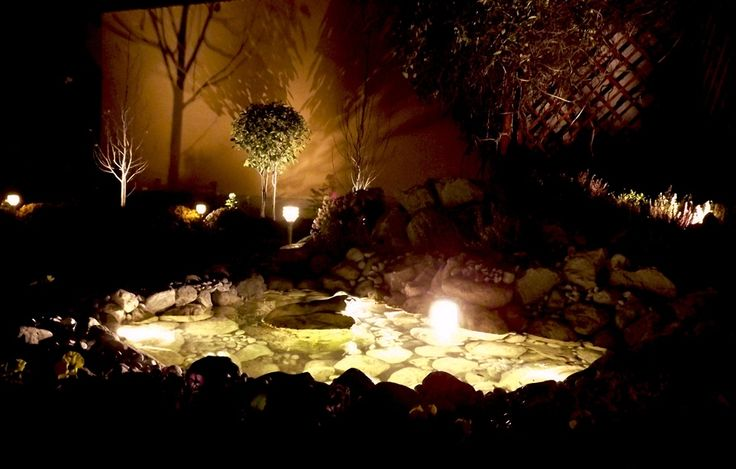 pond lights- tóvilágítás