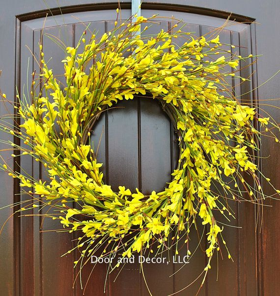 22 or 28 Forsythia wreath, Golden yellow wreaths  Nothing says Sunshine like the first yellow flowers of forsythia blooms. This yellow forsythia wreath is simply stunning! I know you will fall in love with this bright and cheerful wreath. It will add a nice punch of color to your front door, patio, or interior wall decor without being overwhelming. This wreath is actually designed for outdoor (covered) use and should last all spring and summer as long as it is not constantly exposed to the…