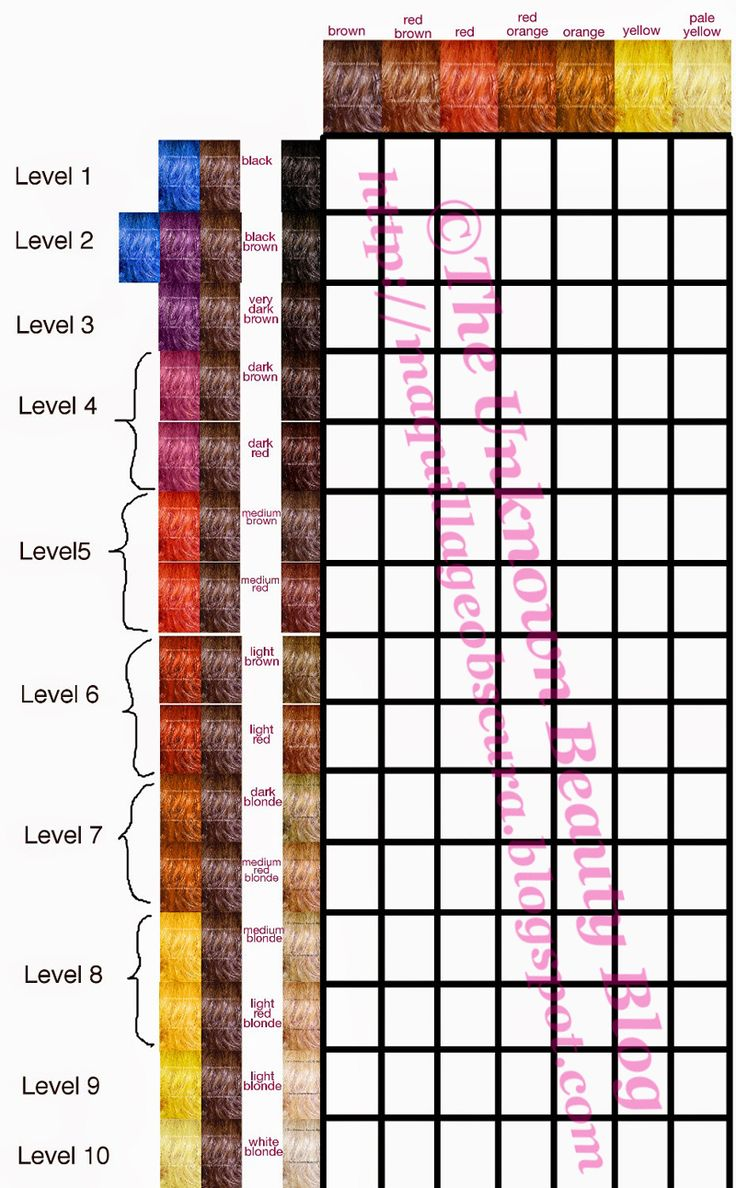 11 best level chart images on pinterest hair colour hair base level hair and liftingcoloring chart nvjuhfo Images