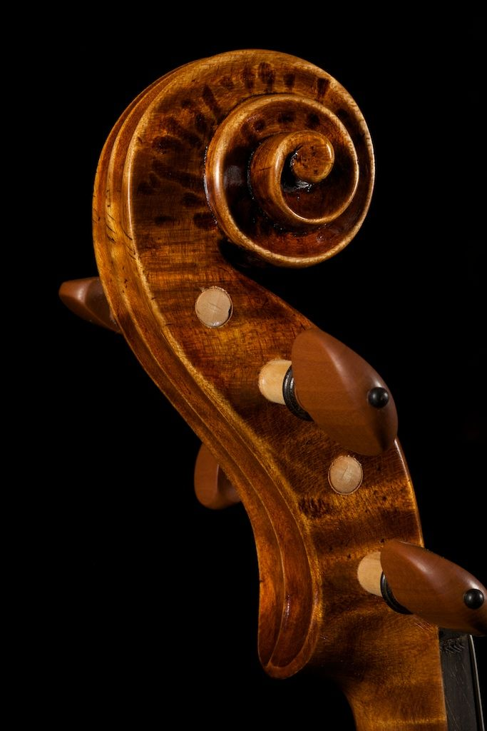 Guarneri Violin mod. Plowden (scroll) Violin maker: Matteo Mazzotti