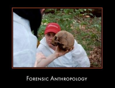 Forensic Anthropology Information Guide.