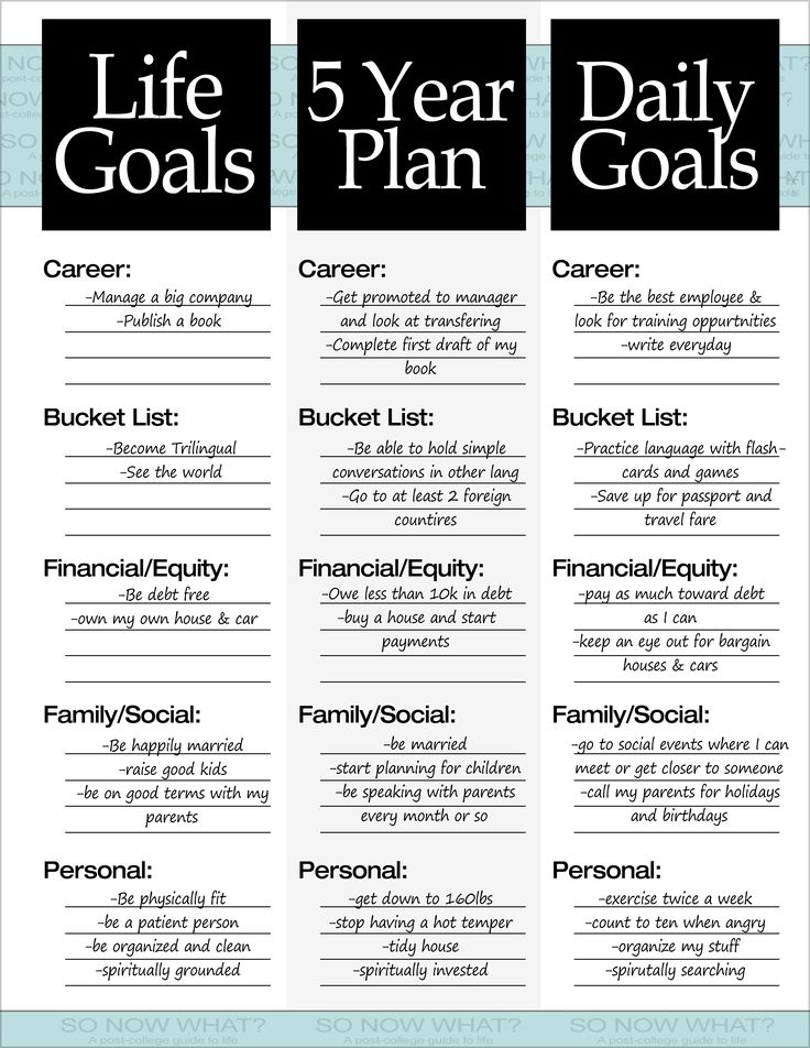 The 3 Steps to a 5 Year Plan Goal, Journal and Bullet - sample work plan template