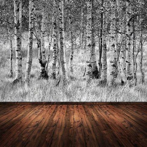 fototapete birkenwald sunday. Black Bedroom Furniture Sets. Home Design Ideas