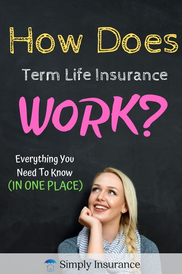 How Does Term Life Insurance Work Everything You Need To Know In
