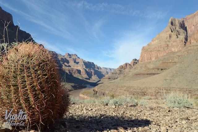 El Cañón del Colorado está situado en el norte de Arizona (EE.UU). A esta  escarpadísima e impresionante garganta formada por el río Colorado se puede llegar en diversos medios de transporte, incluso hay excursiones de senderismo para los más atrevidos. www.vueltaabierta.com