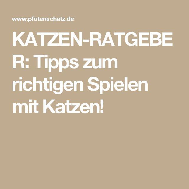 Katzen Spielen Backe Backe Kuchen Deutsch Beliebte Urlaubstorte