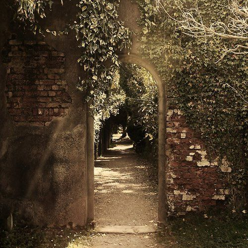 ♔ Enchanted Fairytale Dreams ♔: The Forgotten Gardens, Secret Gardens, Brick Wall, Visual Bookmarks, Beautiful, Gardens Wall, Gardens Doors, Dreams Gardens, The Secret